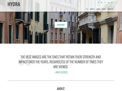 Hydra Photography Theme Screenshot