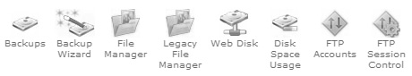 cpanel top file management features