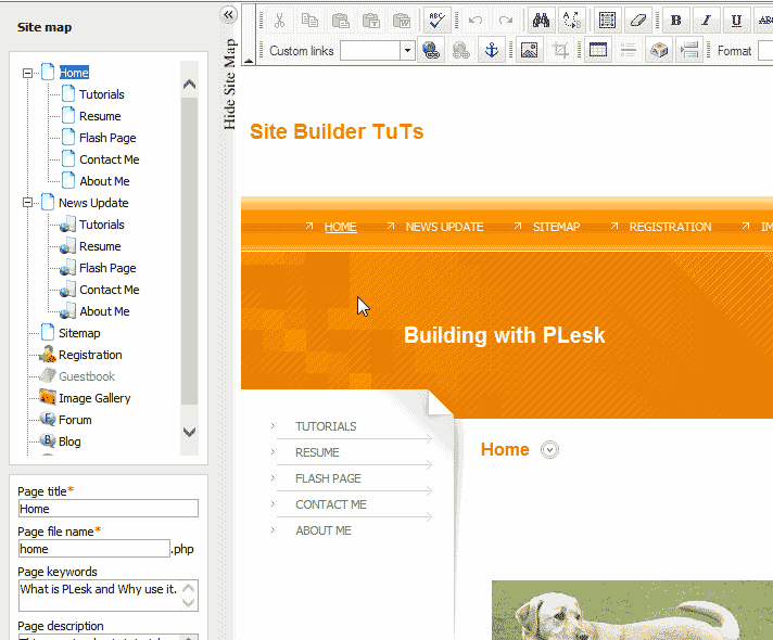 View with teh EWdit section looking normal Internet Explorer Premium Web Builder