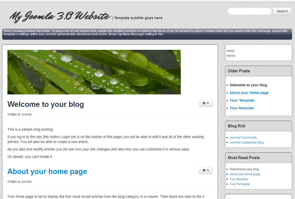 Joomla 31 Blog Template InMotion Hosting