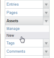 Add New Asset Movable Type
