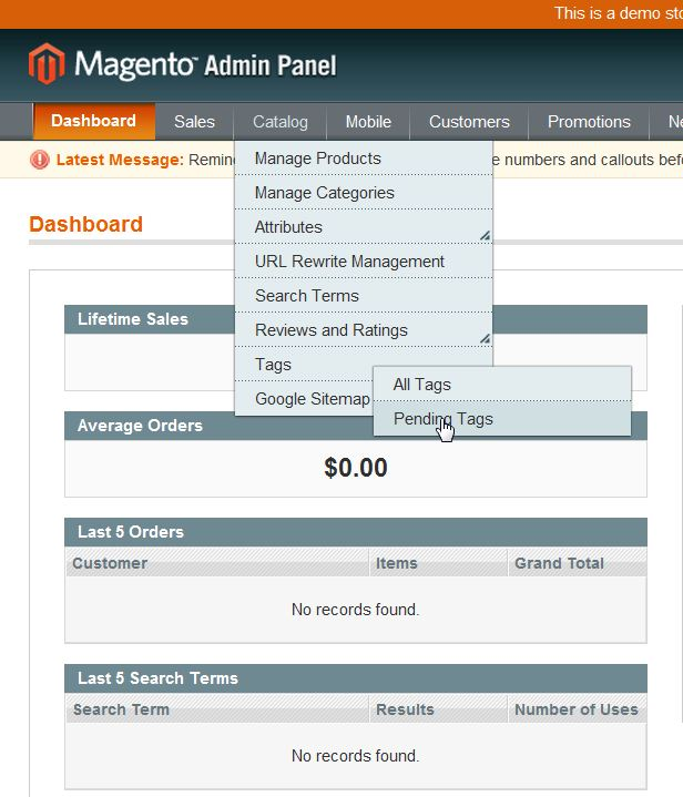 magento_pending_tags_1