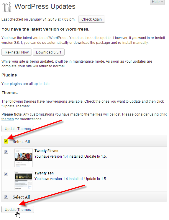 wordpress admin updates select all themes click update themes