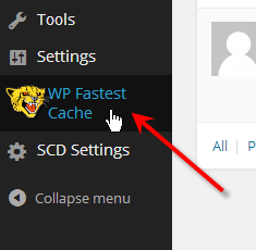 click on wp fastest cache