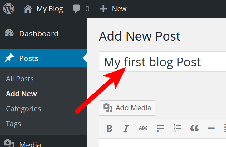 Entering Post Title in WordPress