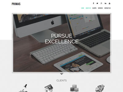 Primus Business Theme Screenshot