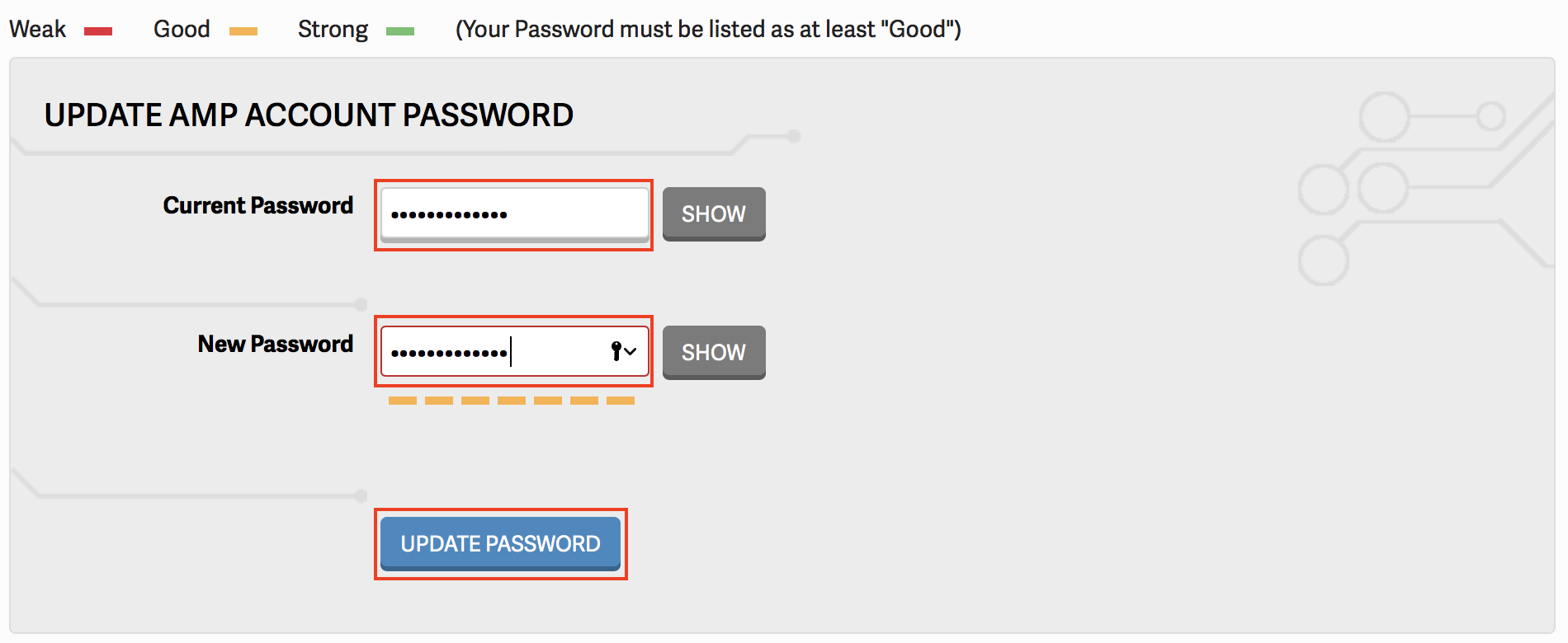 Update AMP Password section of AMP displayed with password fields and UPDATE PASSWORD button highlighted.