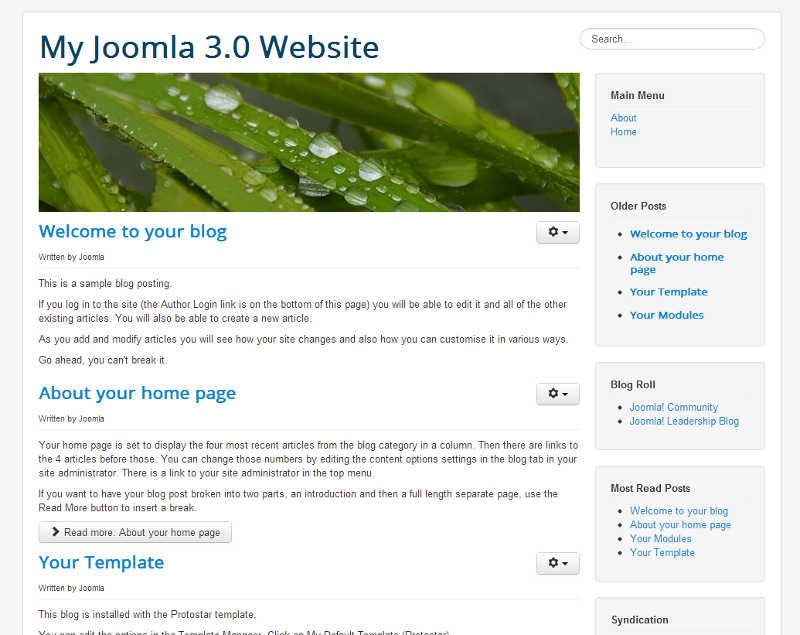 previous template Joomla