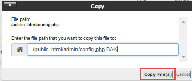 Type in the name and confirm the path of the file to copy