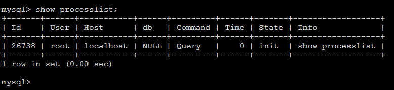 Show MySQL processes in command line