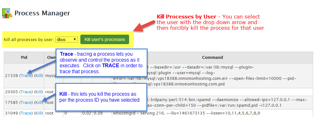 Trace and Kill processes options