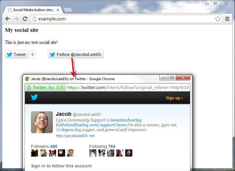 example site with twitter share a link and follow button