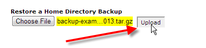 cpanel backups click upload